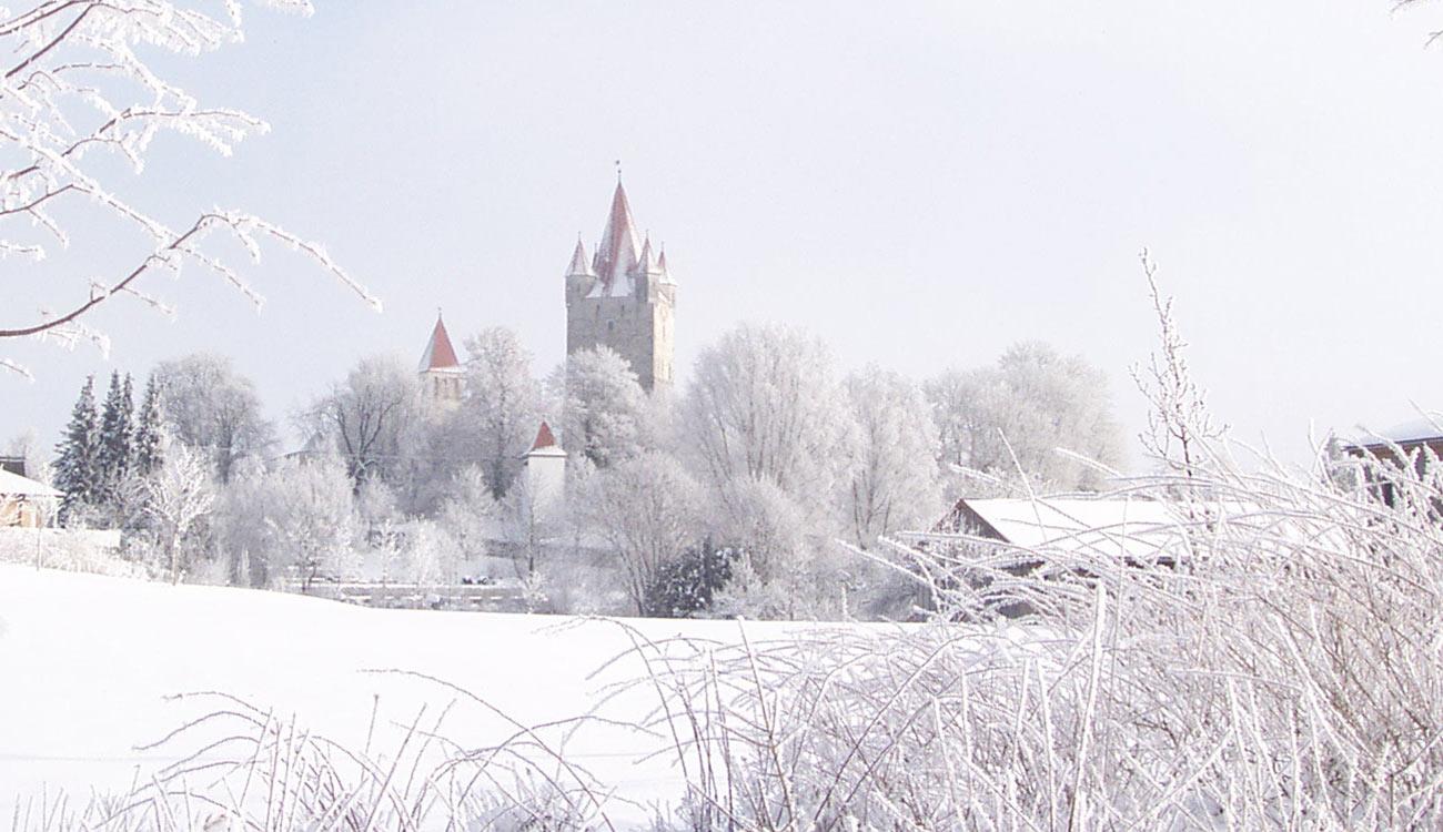 Burganlage Haag