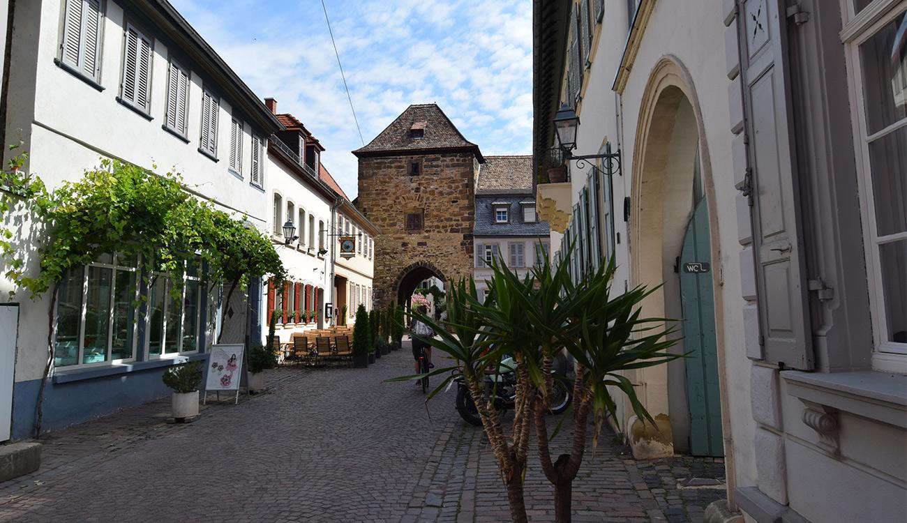 Freinsheim Stadtmauer